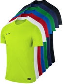 Nike Men's Park VI Crew
